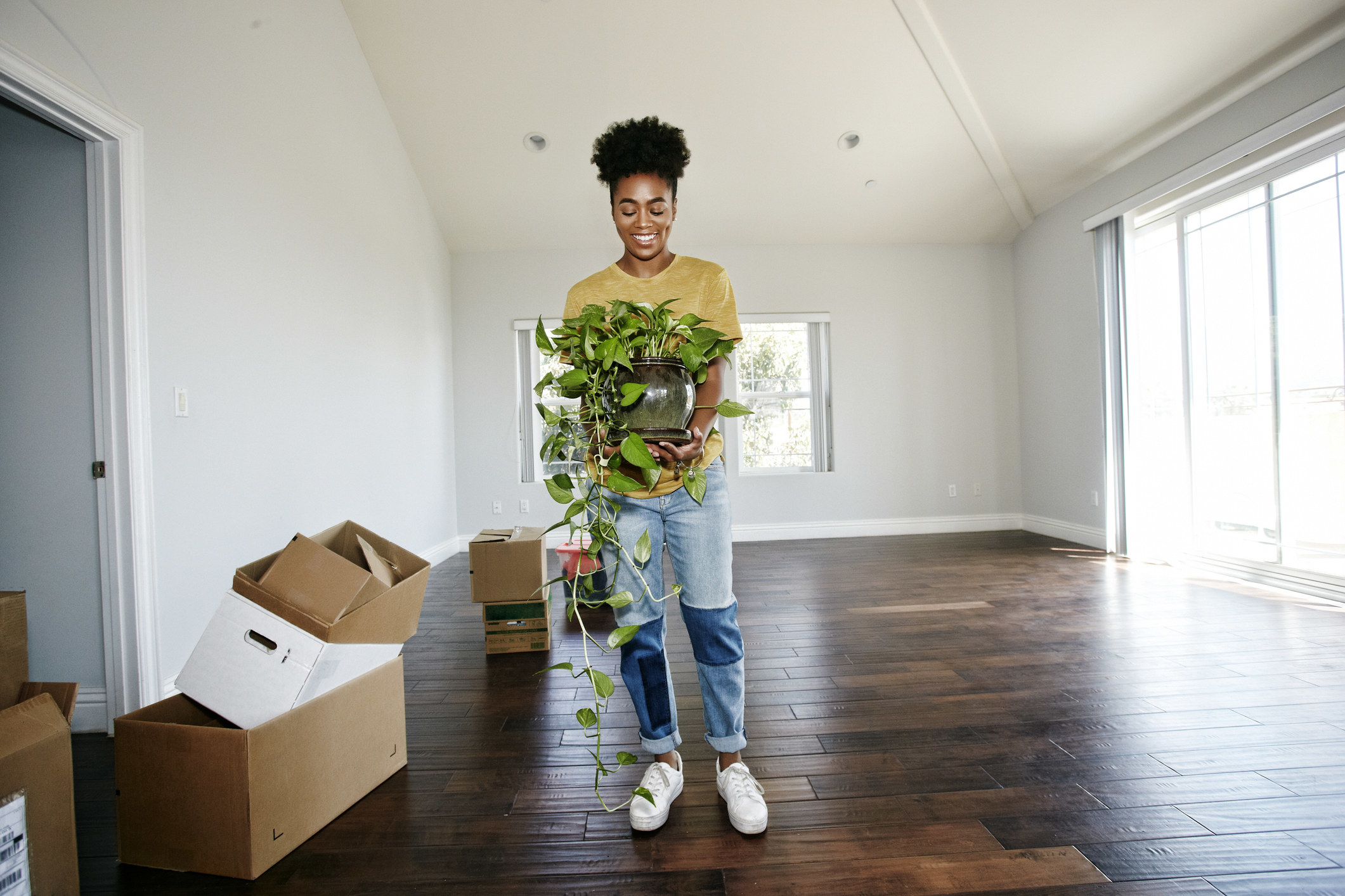 Person moving a plant and boxes into their new apartment