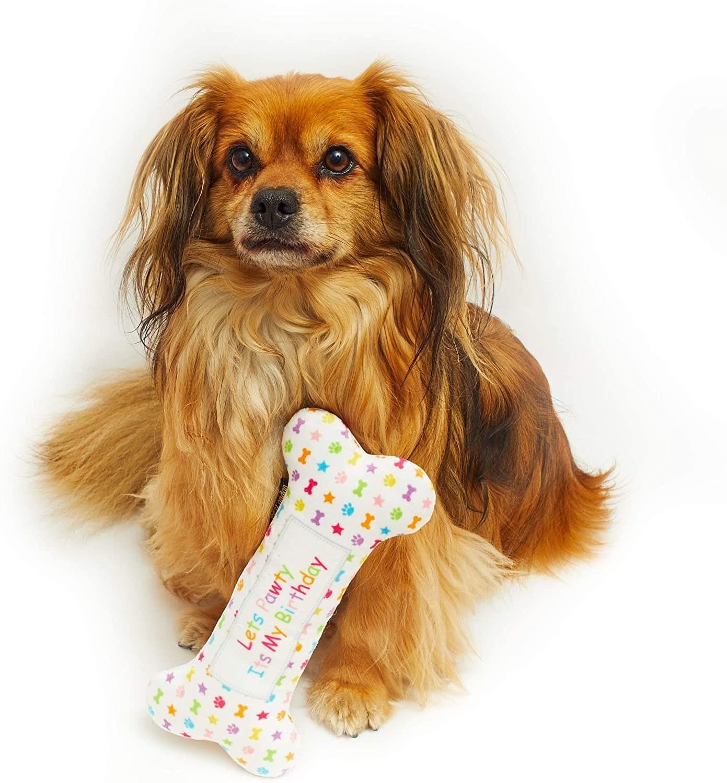 dog with bone toy
