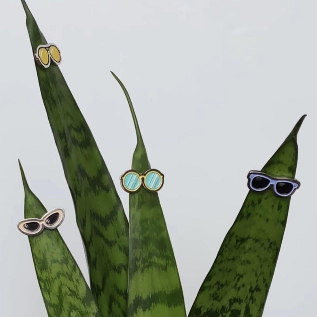 Eyeglasses plant magnet