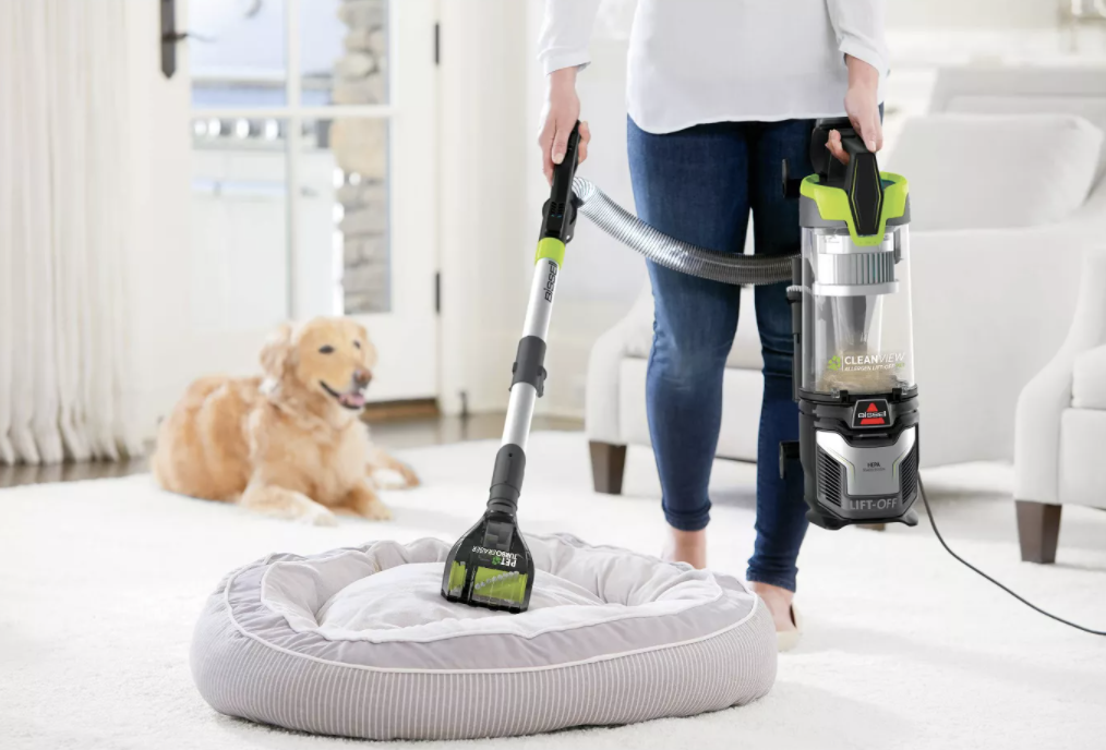 a model using the Bissell to vacuum a pet bed
