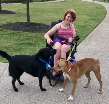 a person in a wheelchair wearing the hands-free dog leash connected to two medium dogs