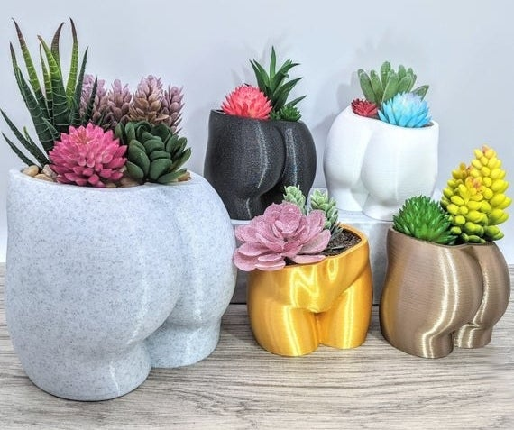 five booty planters filled with succulents in different sizes and colors