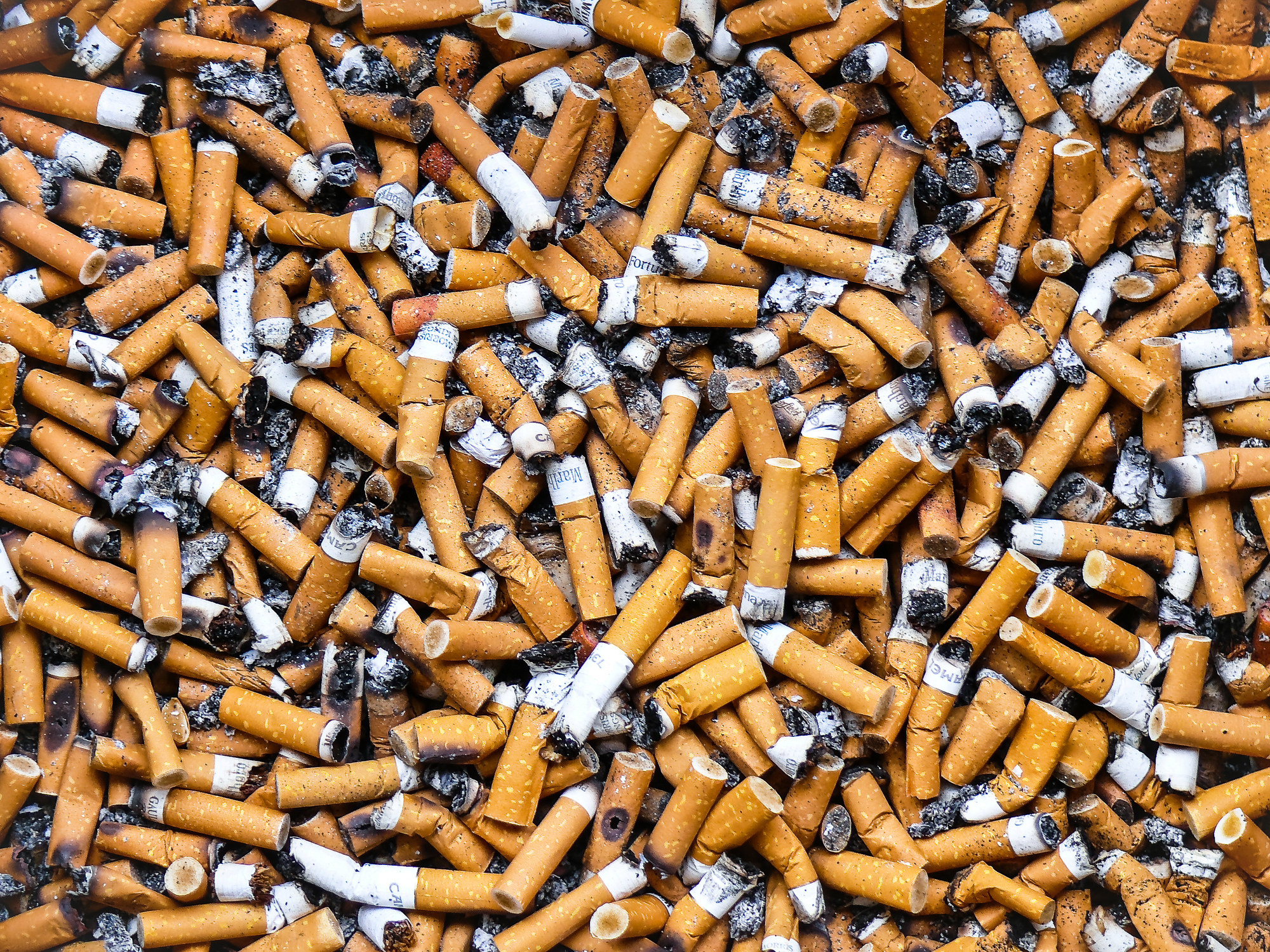 A layer of dozens of burnt-out cigarette butts filling the frame
