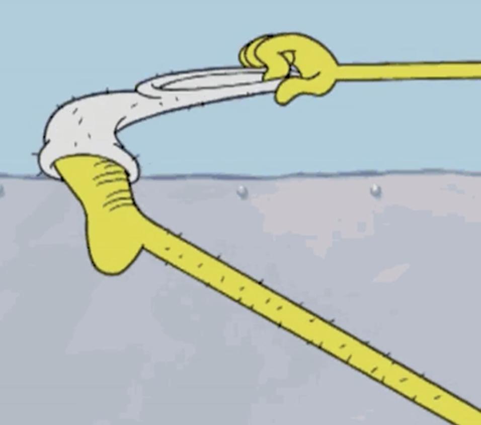 """SpongeBob's foot from """"SpongeBob"""""""