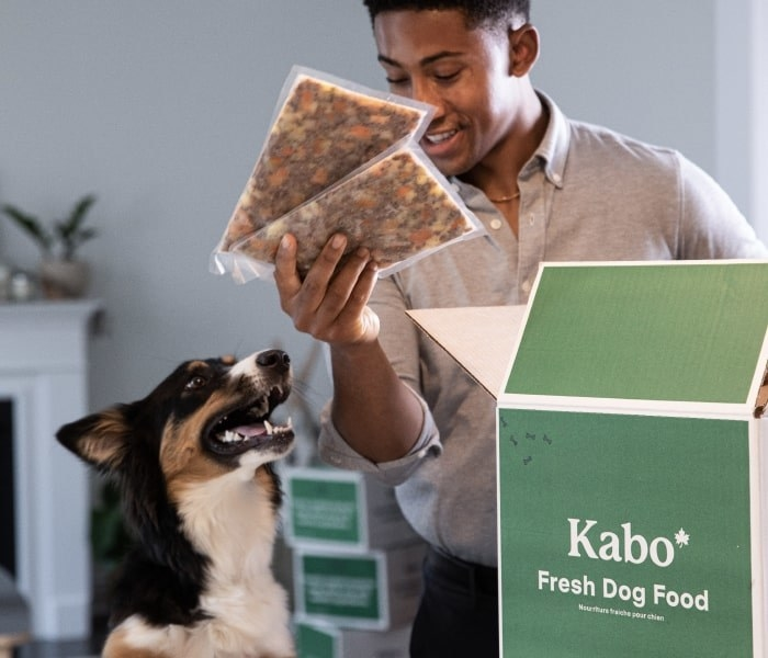 A person showing their dog the dog food that came out of a Kabo subscription box
