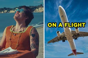 """On the left, Harry Styles in the """"Watermelon Sugar"""" music video, and on the right, a plane in the sky labeled """"on a flight"""""""