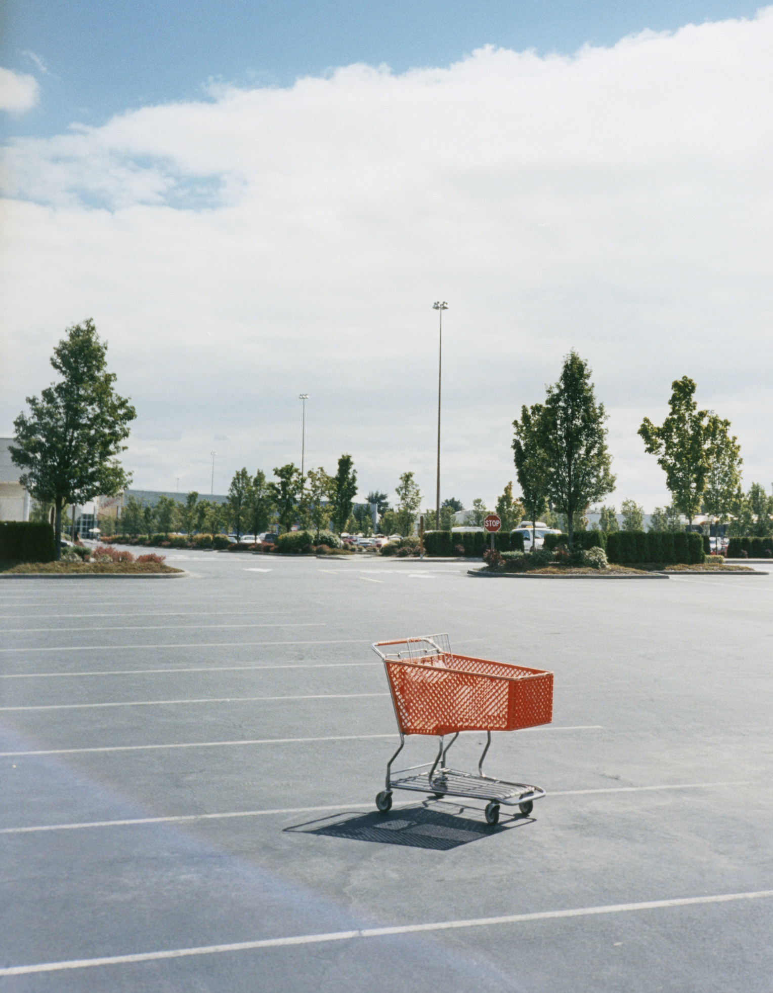 Lone shopping cart in a parking lot