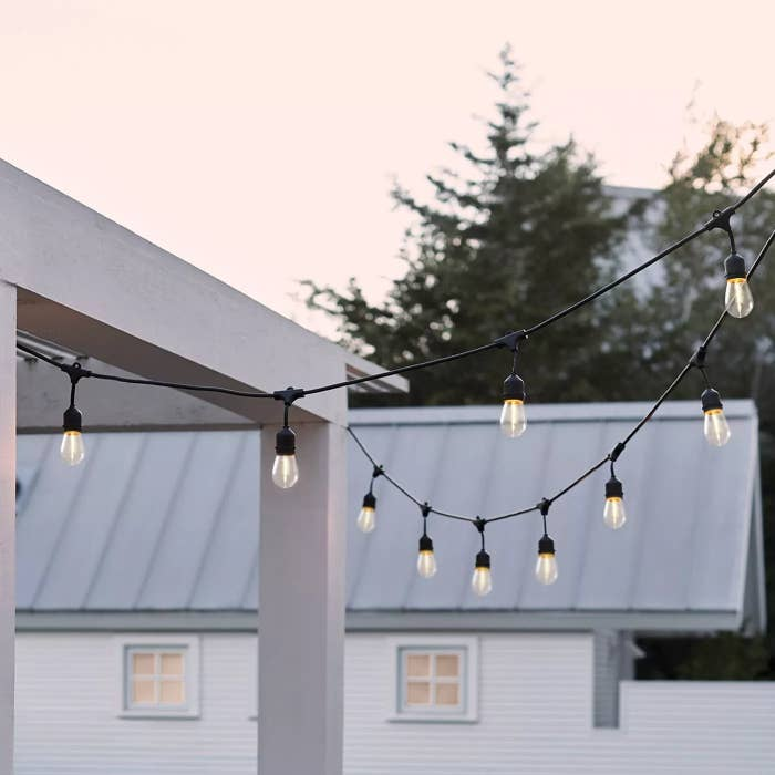 The lights are hung outside with a light pink sky in the background