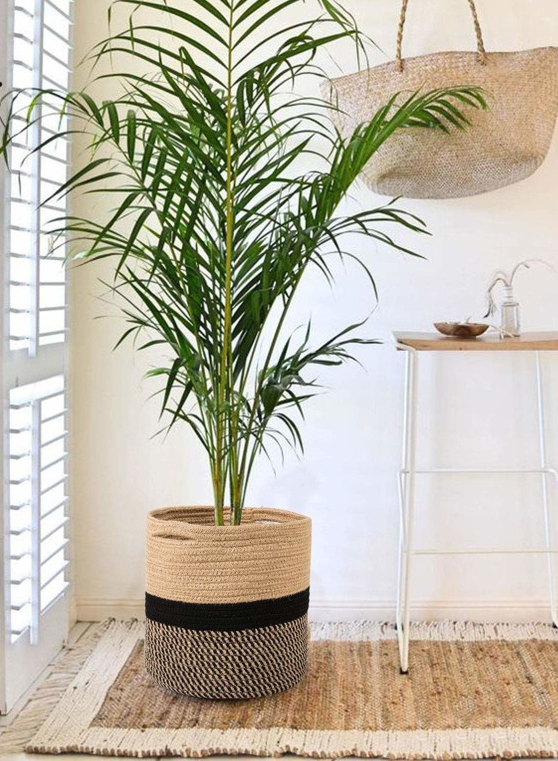 A grey, black and beige jute planter with a plant in it on a rug beside a ladder