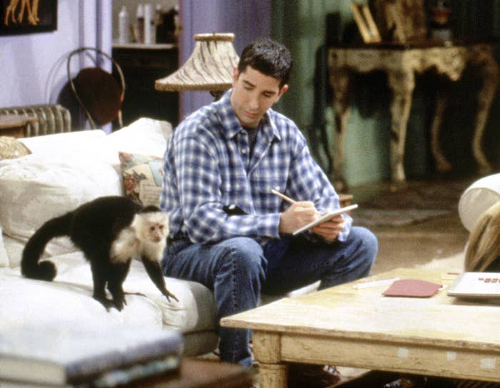 Ross looks down at the monkey while taking notes