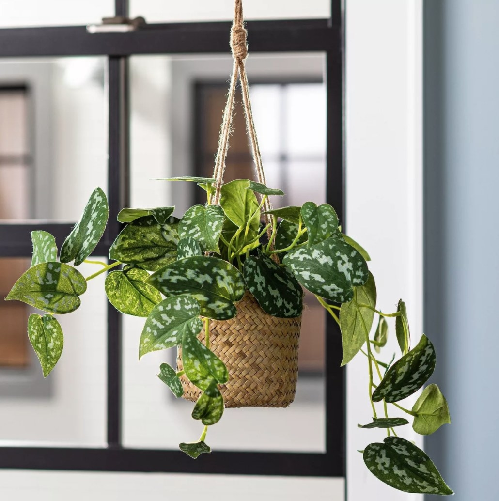 the green faux pothos plant hanging in a woven basket