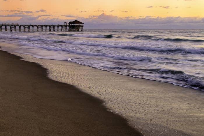 Beachside view of ocean