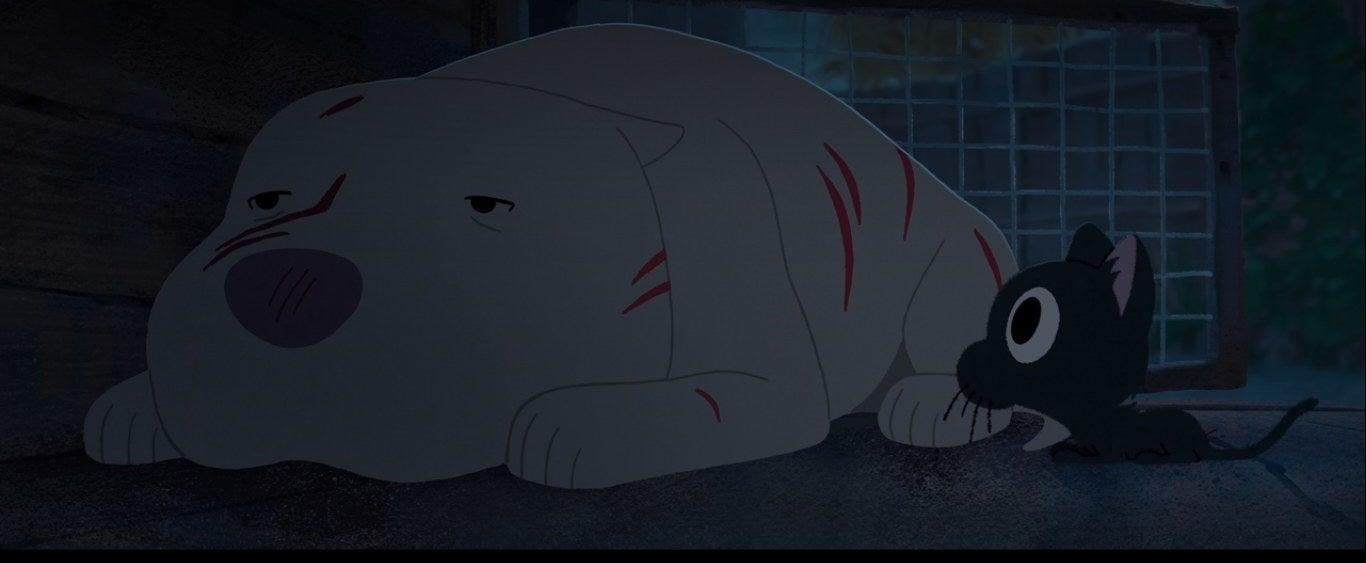 A kitten lies next to a scratched up pitbull