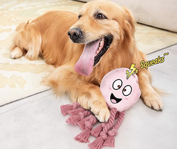 golden retriever laying with octopus plush toy