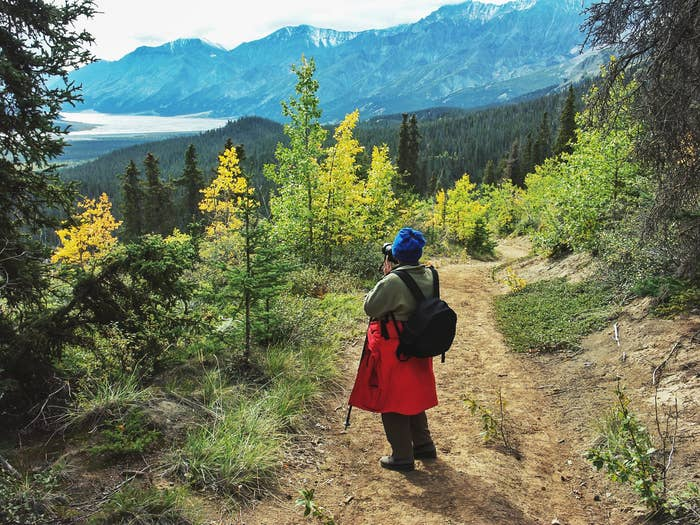 tourist carrying a backpack and walking stick photographing the landscape during a hike in Kluane National Park in late summer.