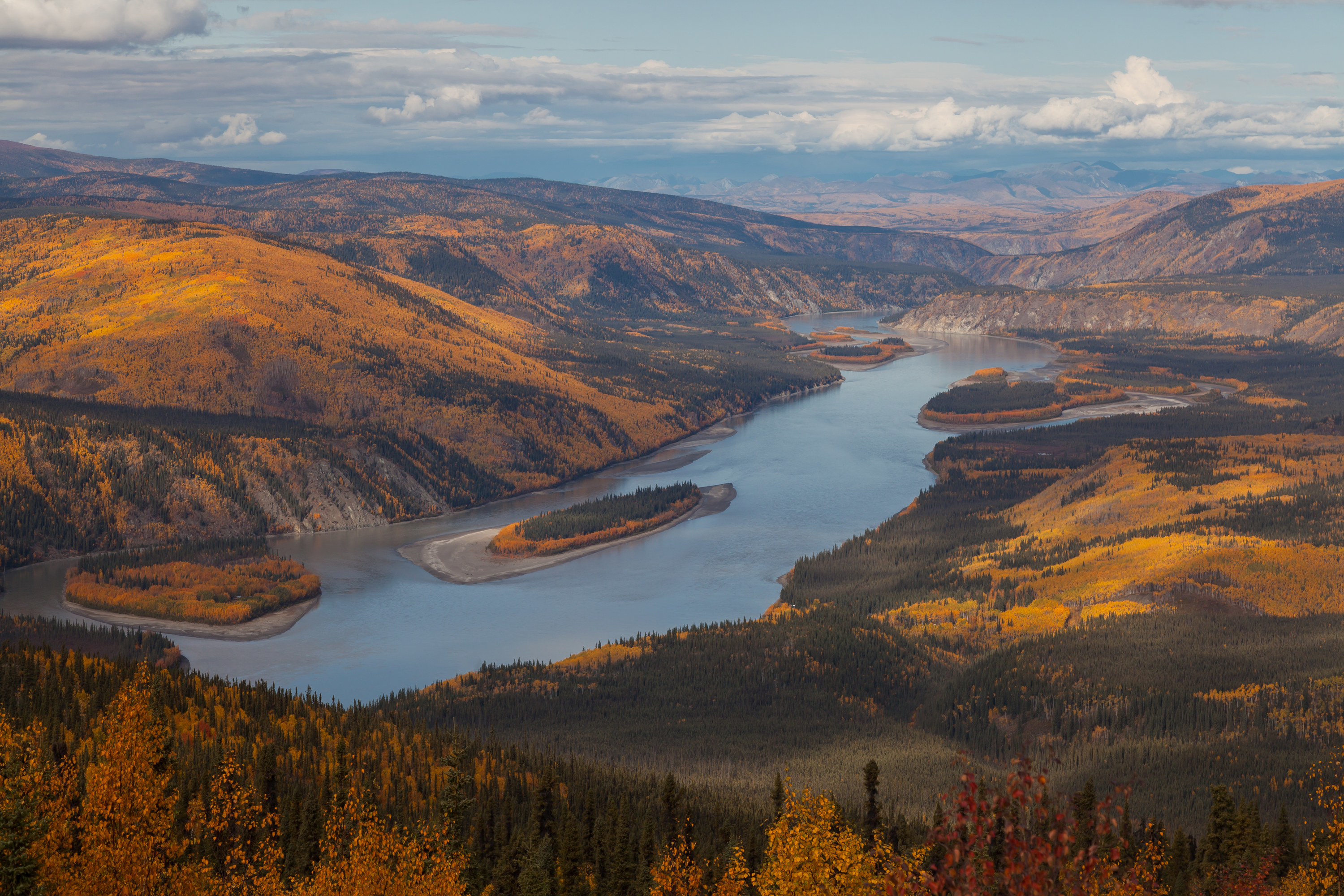 View from the Midnight Dome over the Yukon River near Dawson City, Yukon Territory