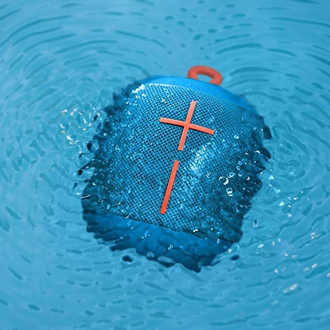 The speaker submerged in water