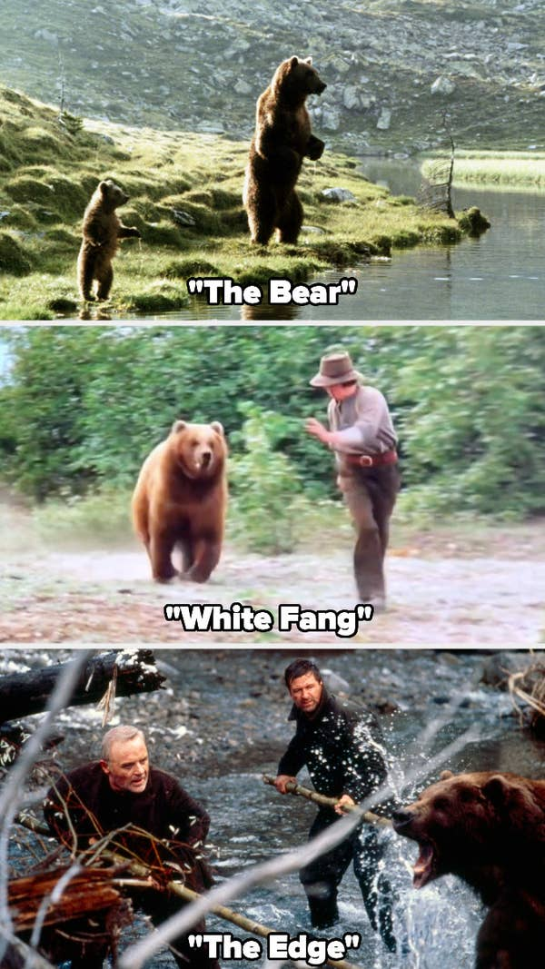 """Bart the Bear in """"The Bear,"""" """"White Fang,"""" and """"The Edge"""""""
