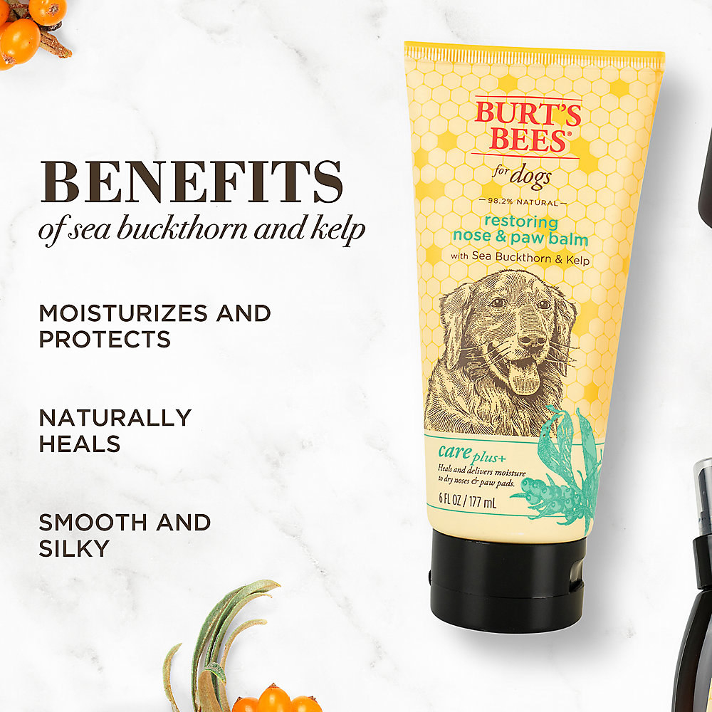 the nose and paw balm with listed ingredients of sea buckthorn and kelp