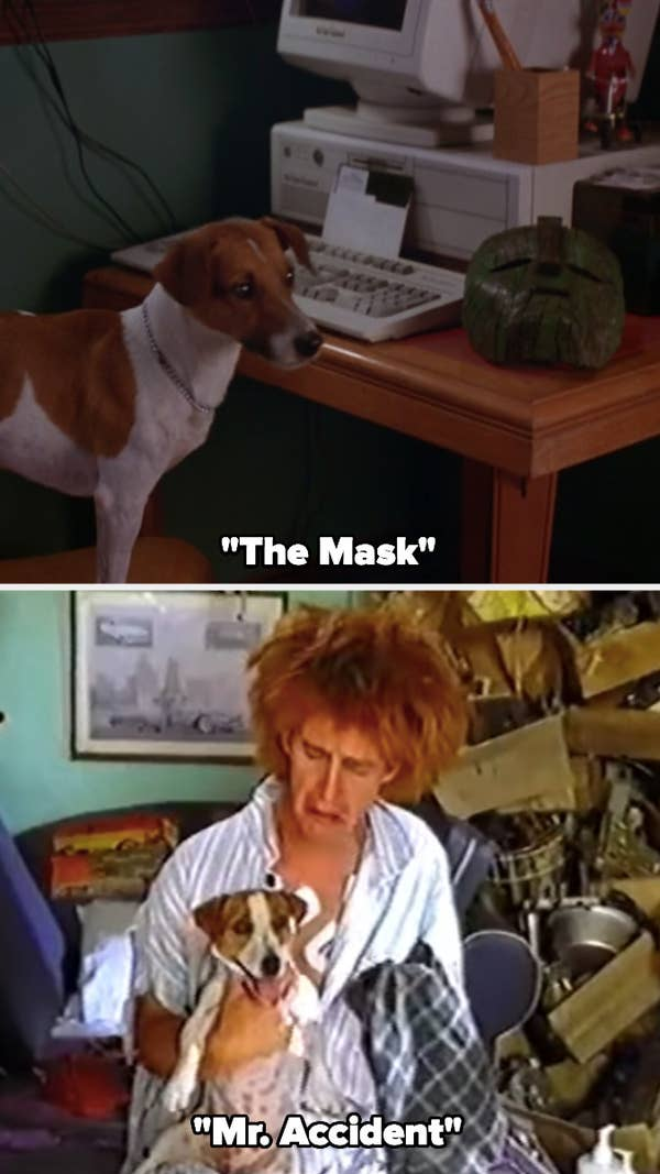 """Max, a Jack Russell Terrier, in """"The Mask"""" and """"Mr. Accident"""""""
