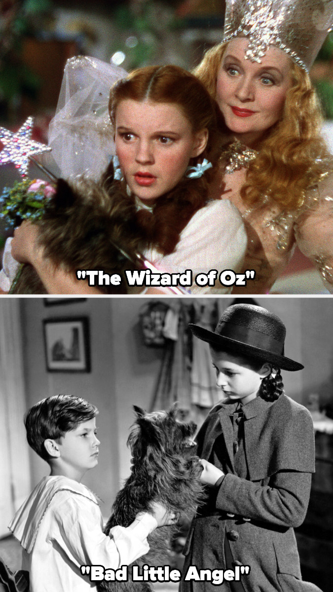 """Toto the dog in """"The Wizard of Oz"""" and """"Bad Little Angel"""""""