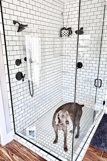 a reviewer photo of a sparkling clean shower with glass doors