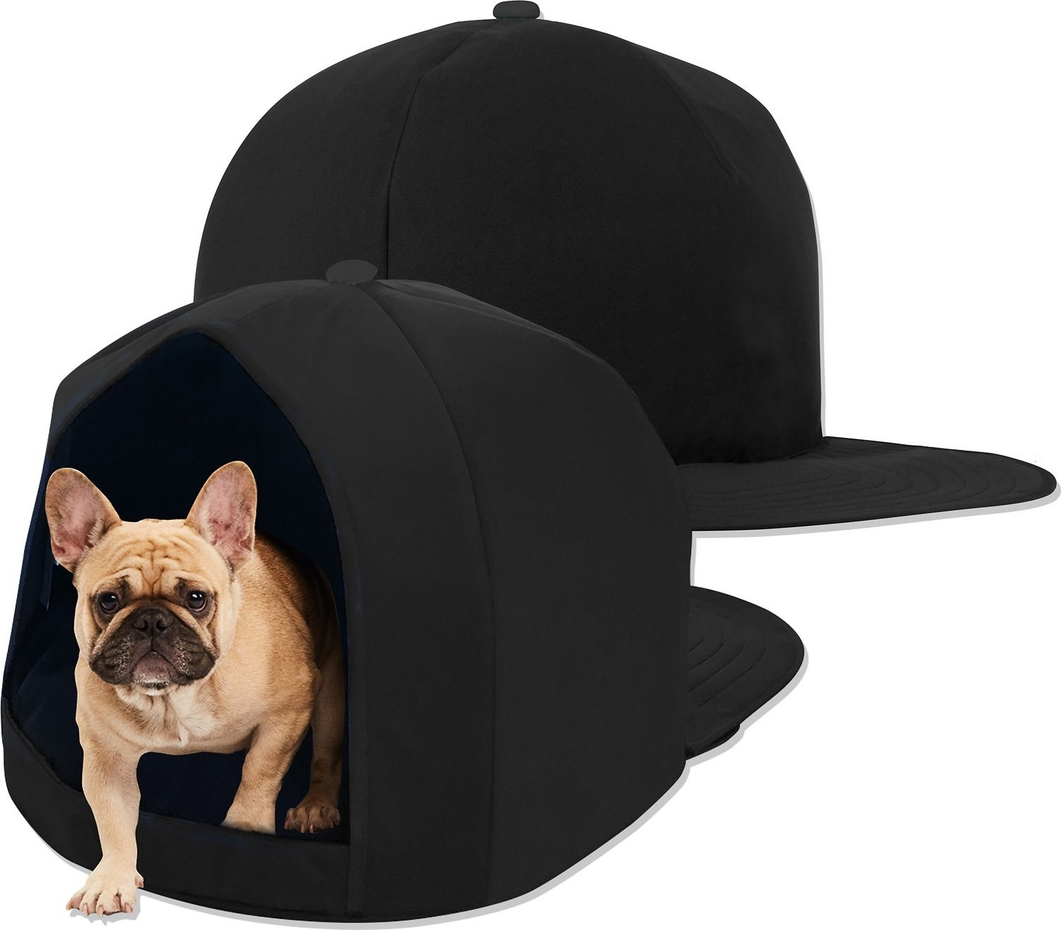 a small dog inside the nap cap