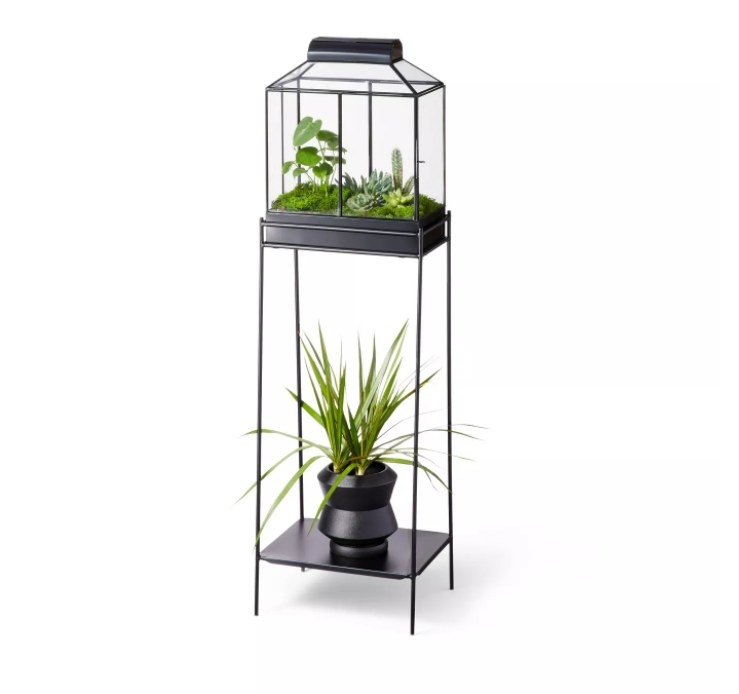 the glass terrarium with two plants in the top and bottom