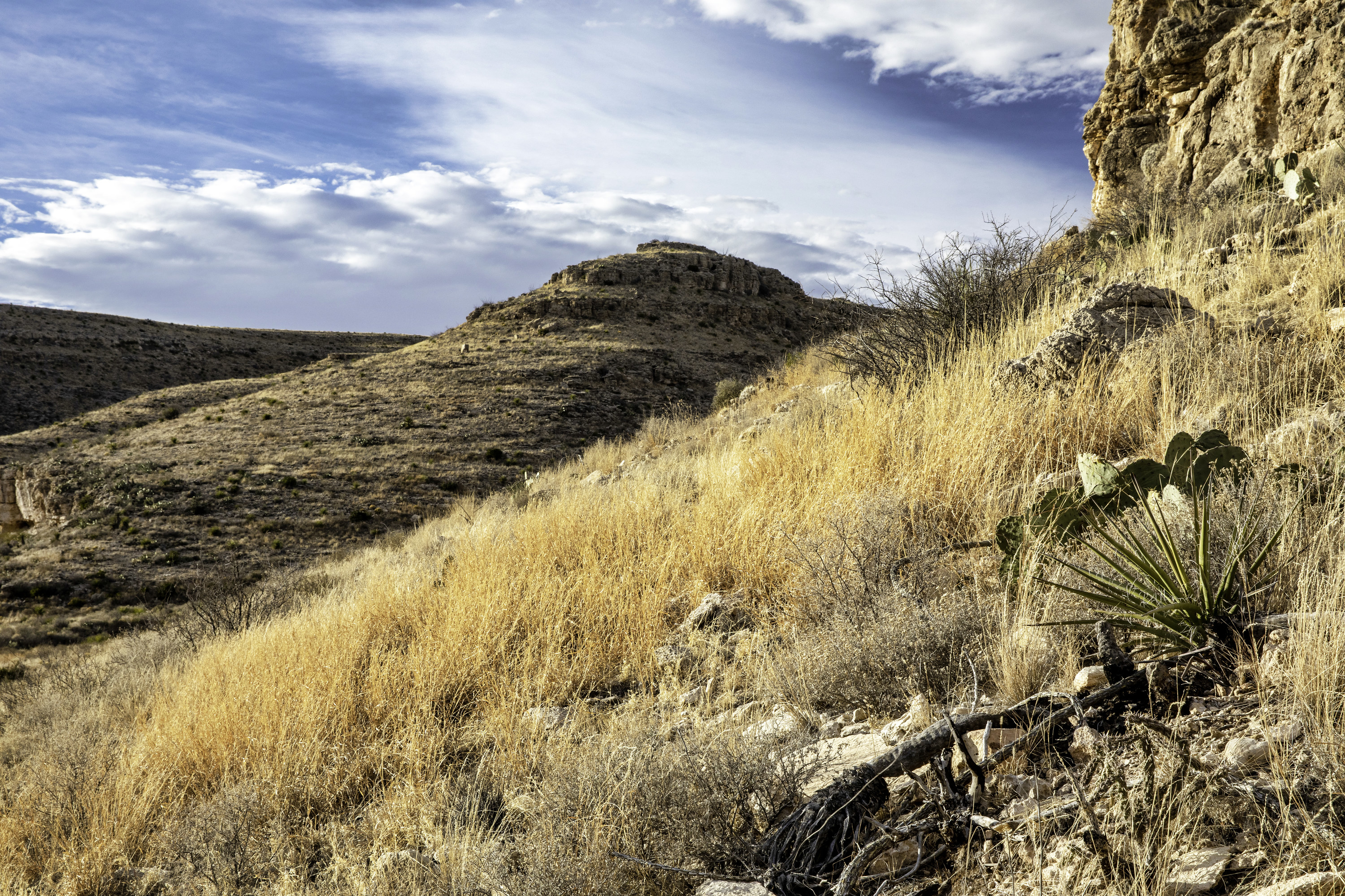 White clouds hang over the rough peak of Carlsbad Caverns' mountains. Dried brush accentuates the frontmost space.