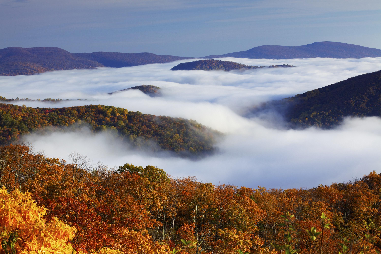 A fog ocean blankets the forests of Shenandoah national park.