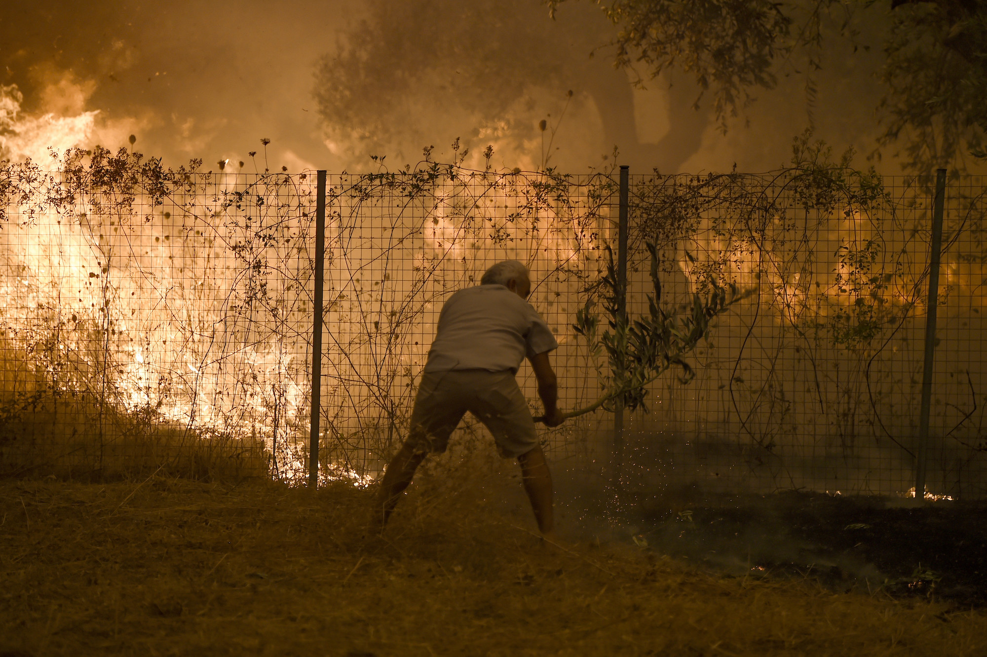 A man standing by burning weeds swings a leafy branch at the ground