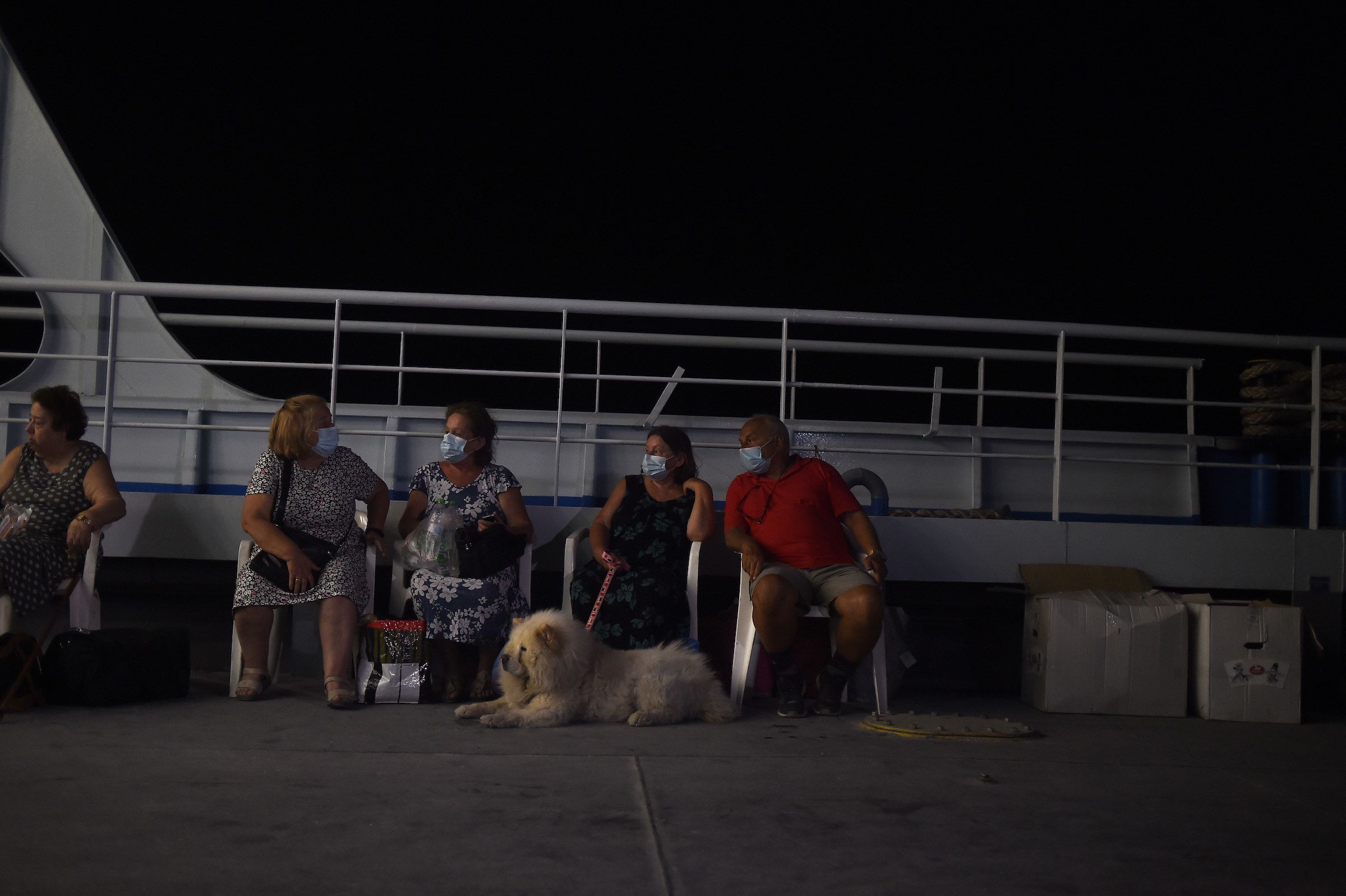 People wearing face masks sit in chairs side by side with a big fluffy dog on a vessel