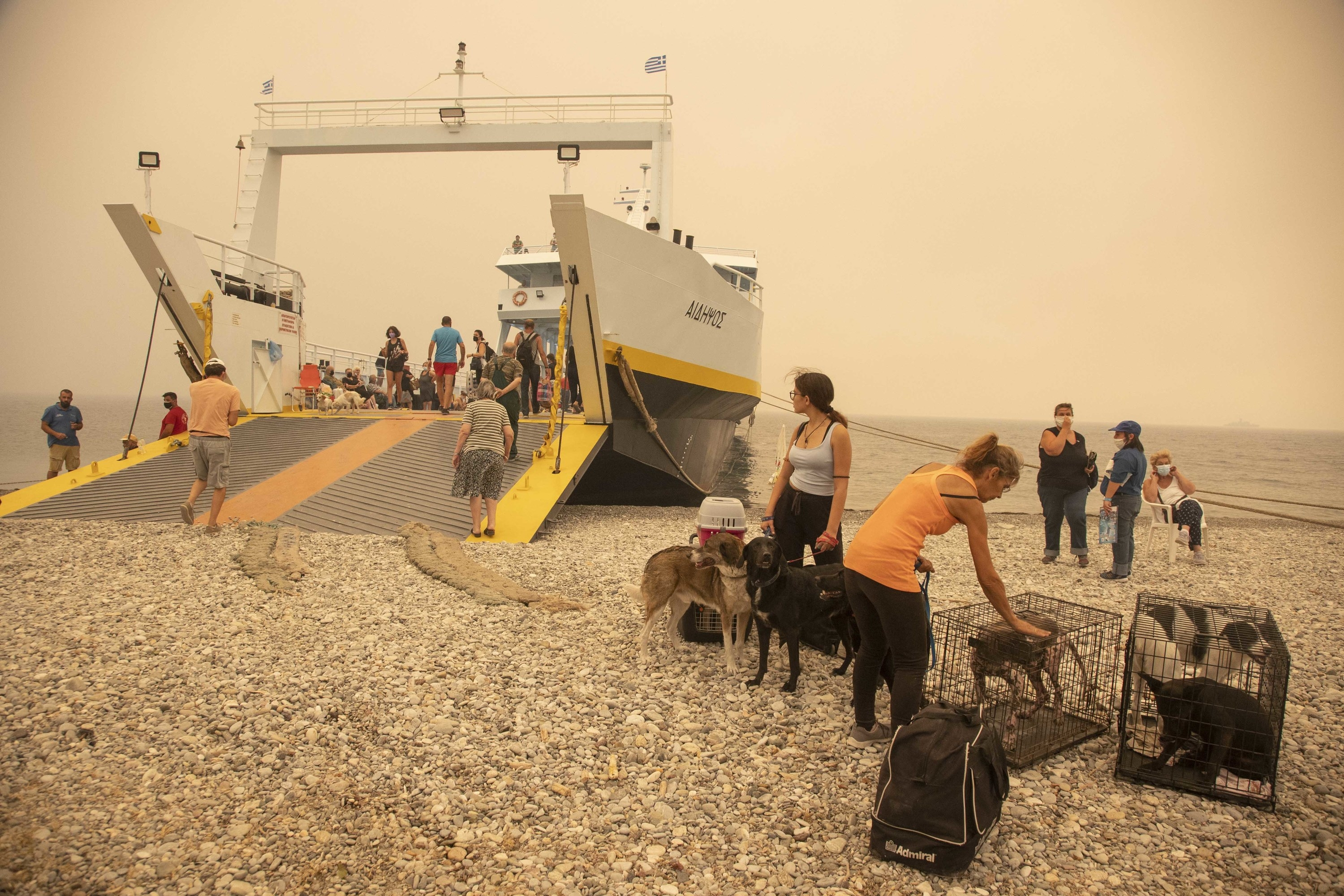 People and their animals stand on a rocky shore before boarding a large boat to evacuate their home island