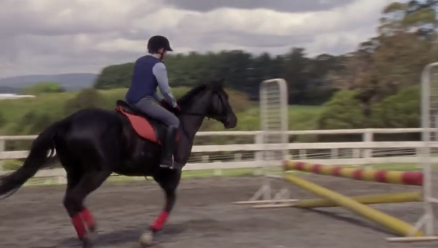 Veronica riding Cobalt; he is galloping towards a jump