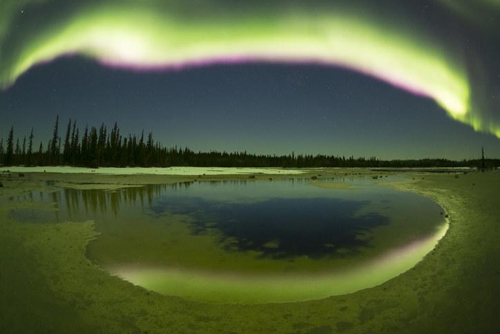 The aurora borealis streaking overhead at Grosbeak Lake, Wood Buffalo National Park, Alberta, Canada