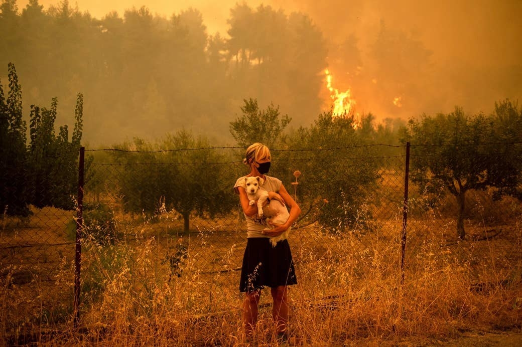 A standing woman holds her dog close to her chest in front of a barbed-wire fence as a fire burns in the background