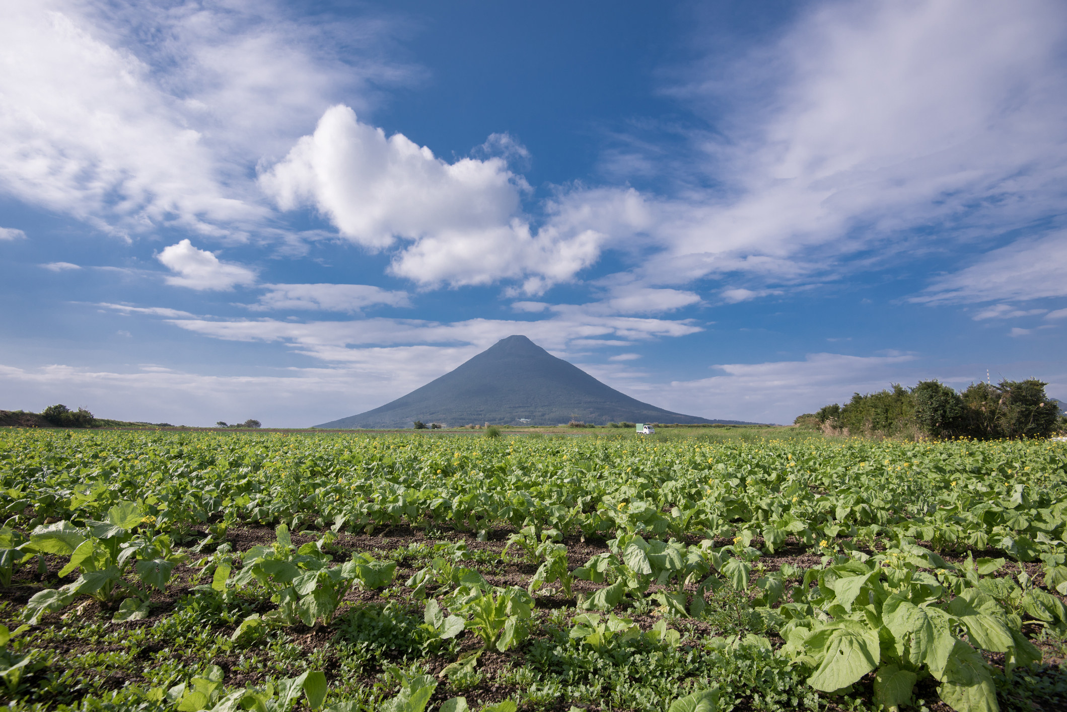 A volcano in southern Japan.