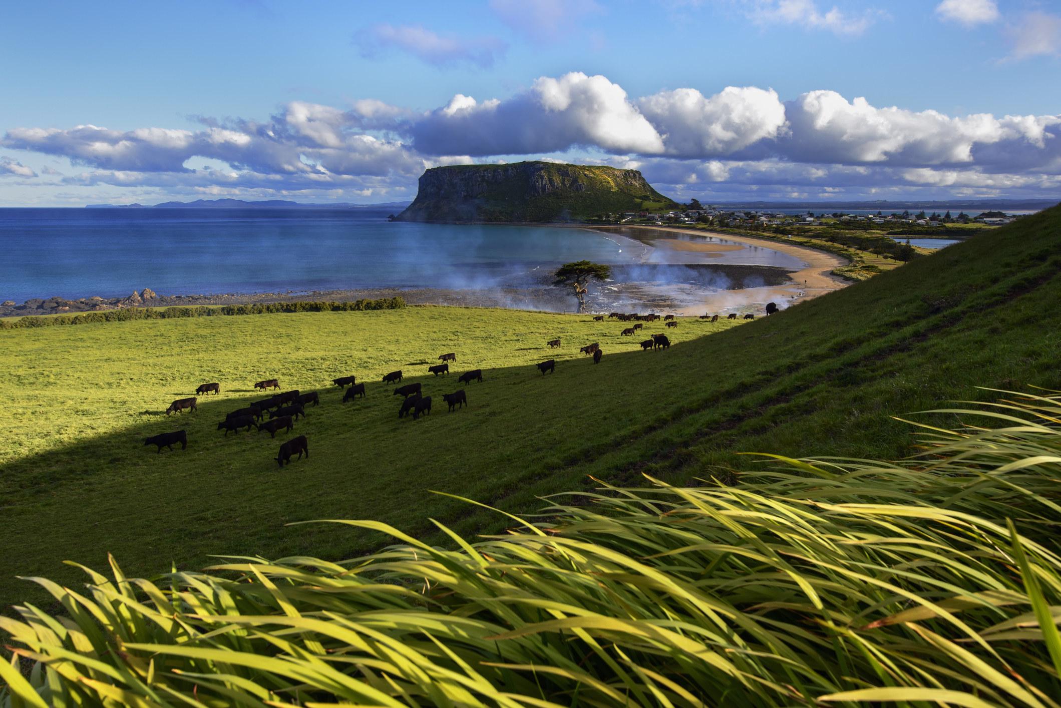Farmland and the sea in Tasmania.