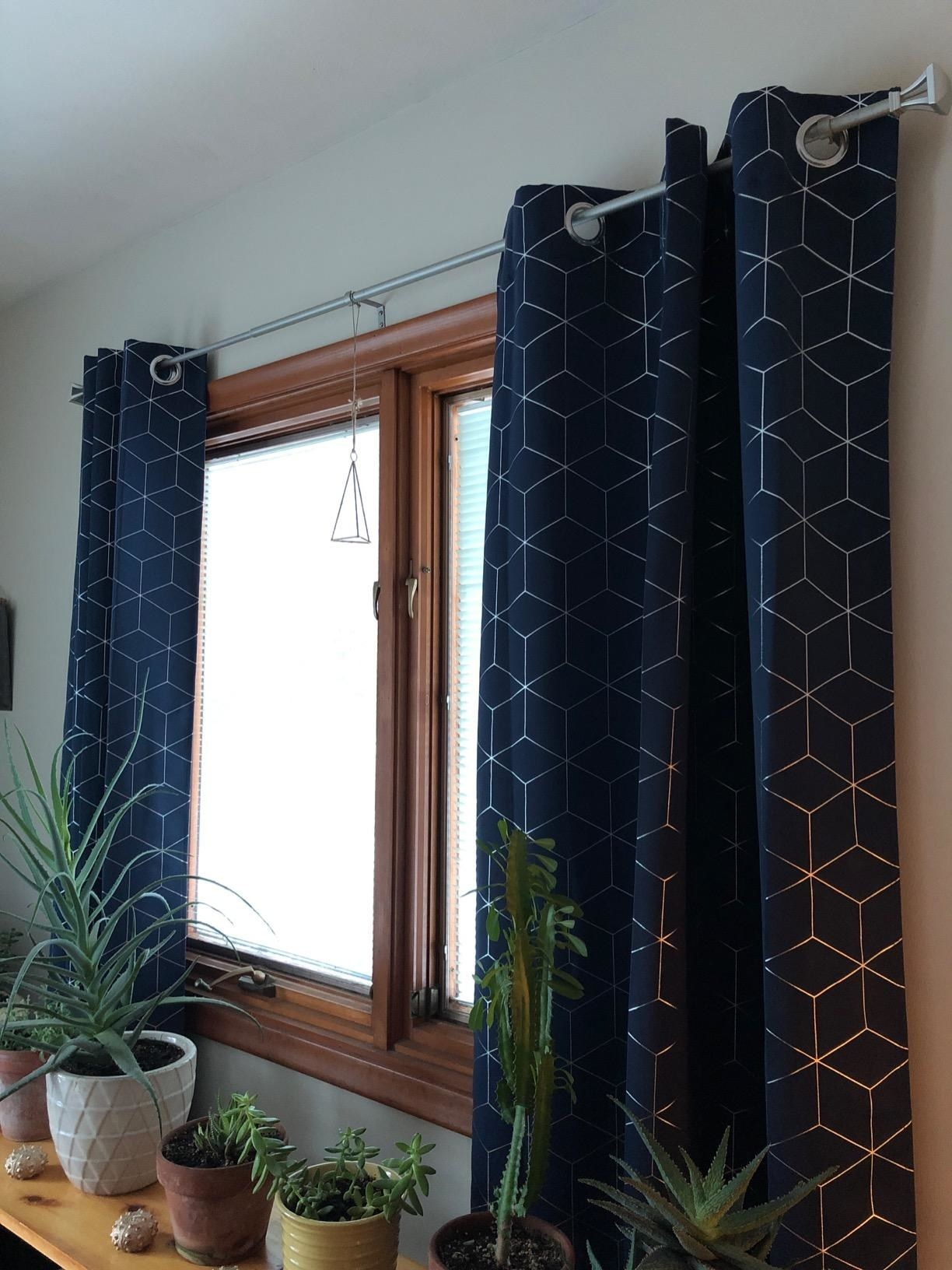 reviewer image of the navy blue curtains hanging behind a row of potted plants