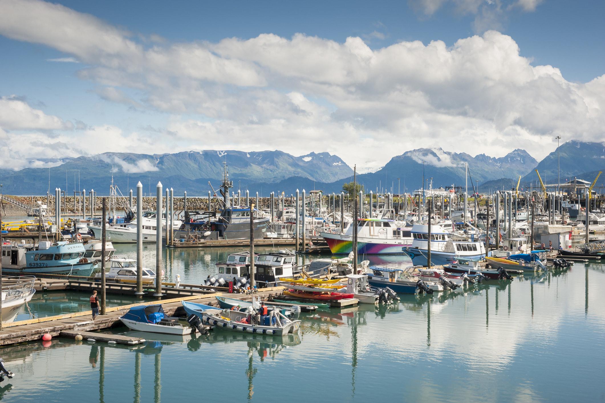 Boats in the harbor in Homer, Alaska.