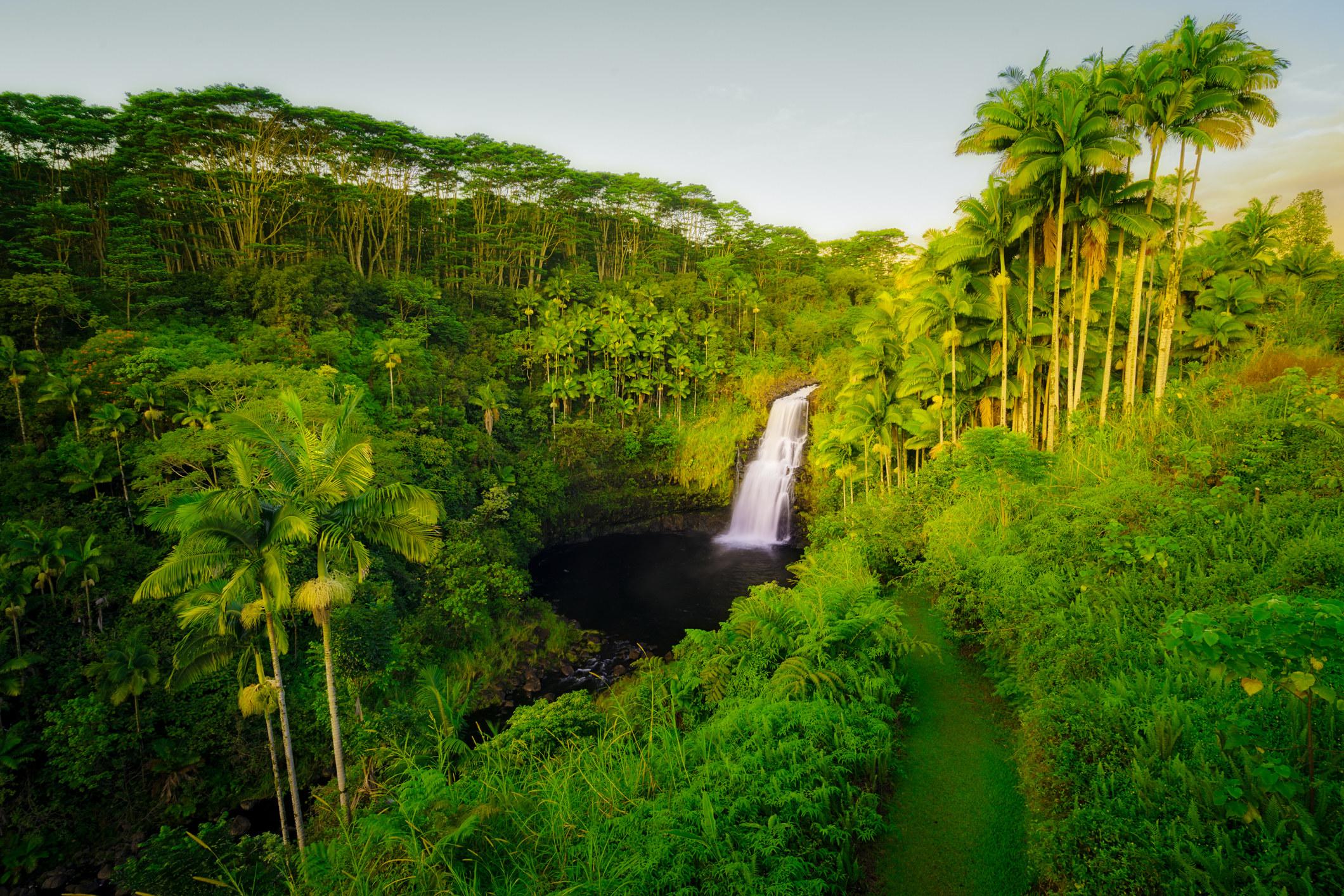 A waterfall in Hilo, Hawaii on the Big Island.