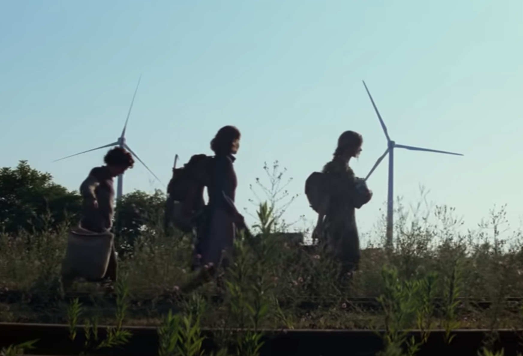 A group of three quietly walking in a field