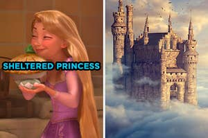"""On the left, Rapunzel from """"Tangled"""" holding a pie labeled """"sheltered princess,"""" and on the right, a castle in the clouds"""