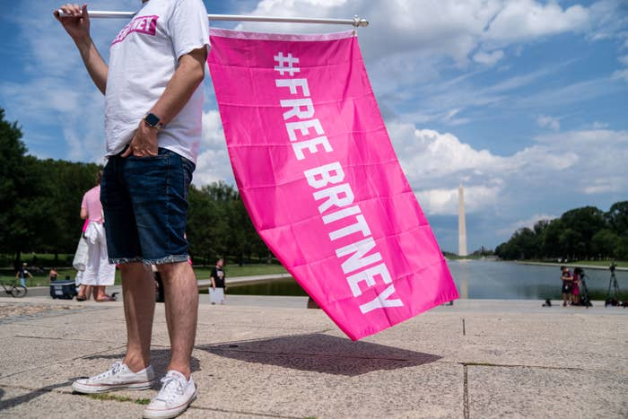 """A person holding a flag reading """"#FreeBritney"""" with the Washington Monument in the background"""