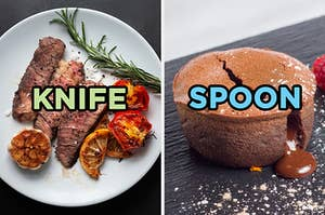 """On the left, sliced steak with some roasted tomatoes and some rosemary labeled """"knife,"""" and on the right, a chocolate lava cake labeled """"spoon"""""""
