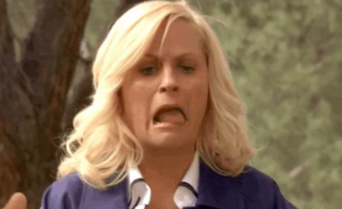 """Leslie from """"Parks and Rec"""" looking grossed out"""
