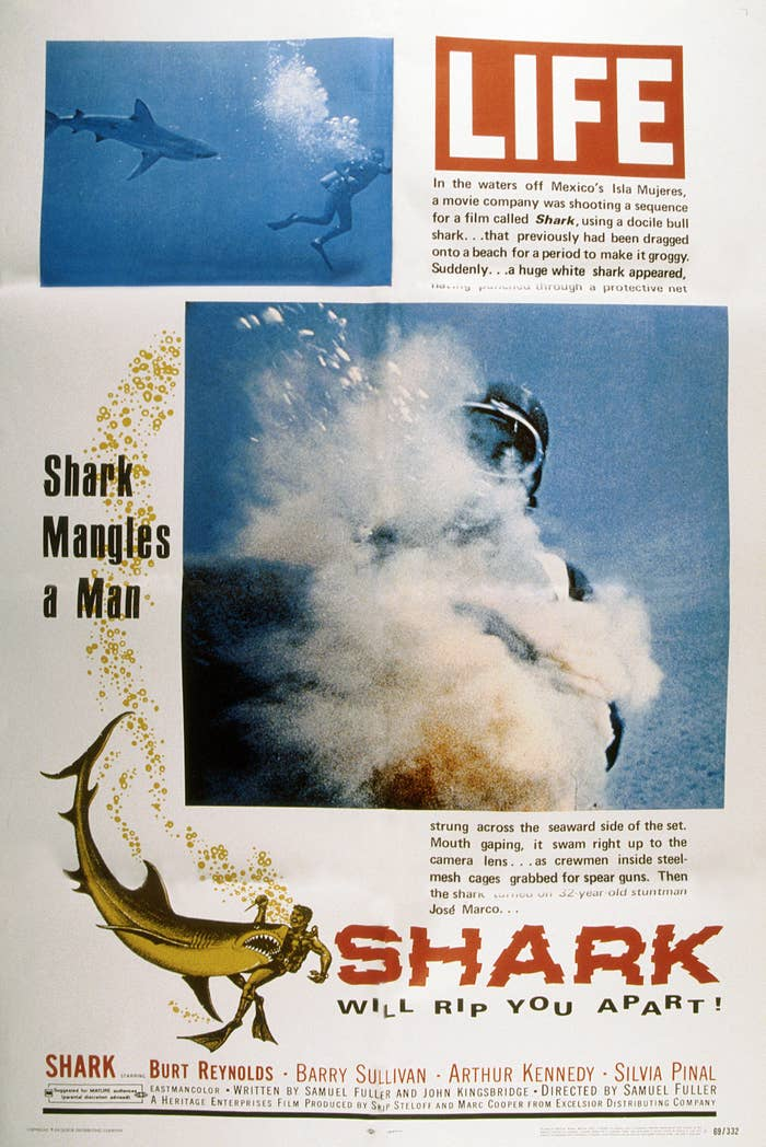 Poster for the film using an excerpt from an article about the accident
