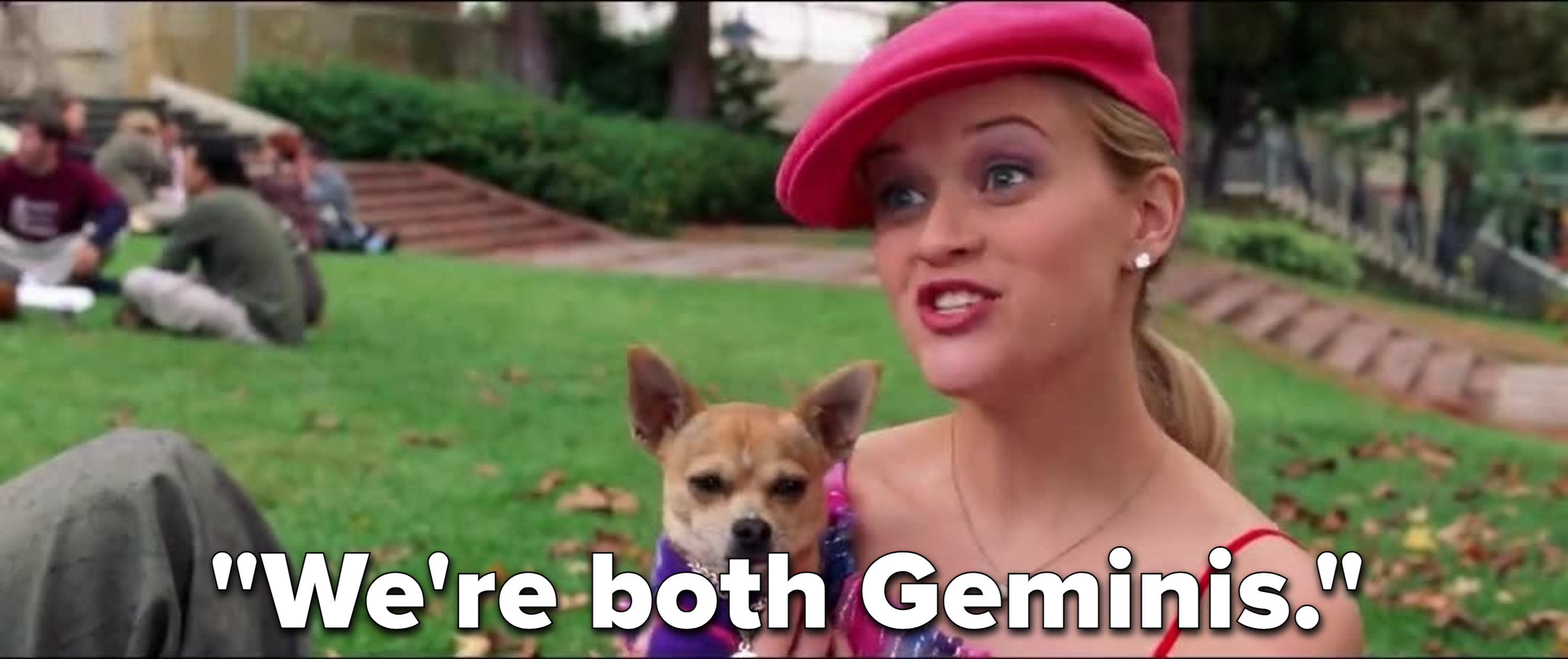 """Elle Woods holding Bruiser, her petchihuahua, saying """"We're both Geminis."""""""