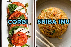 On the left, some caprese salad labeled corgi, and on the right, some fried rice labeled shiba inu
