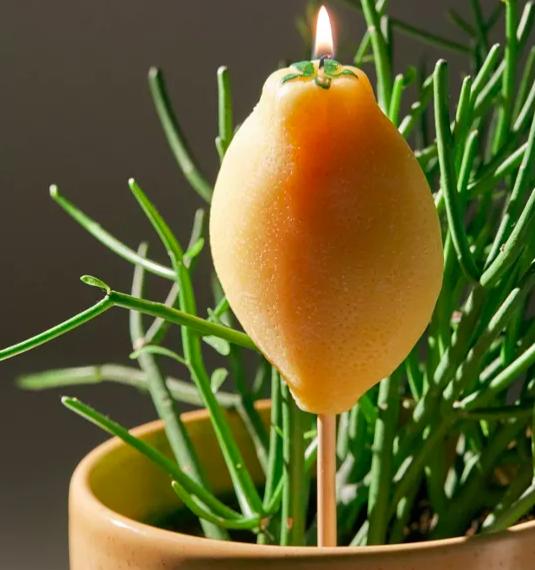 A lemon-shaped citronella candle inside a plant pot